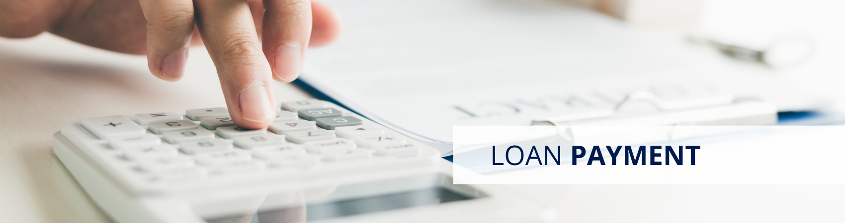 Loan Payment Page